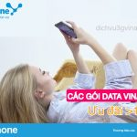 Hướng dẫn đăng ký các gói ưu đãi trên 100GB/ tháng của Vinaphone